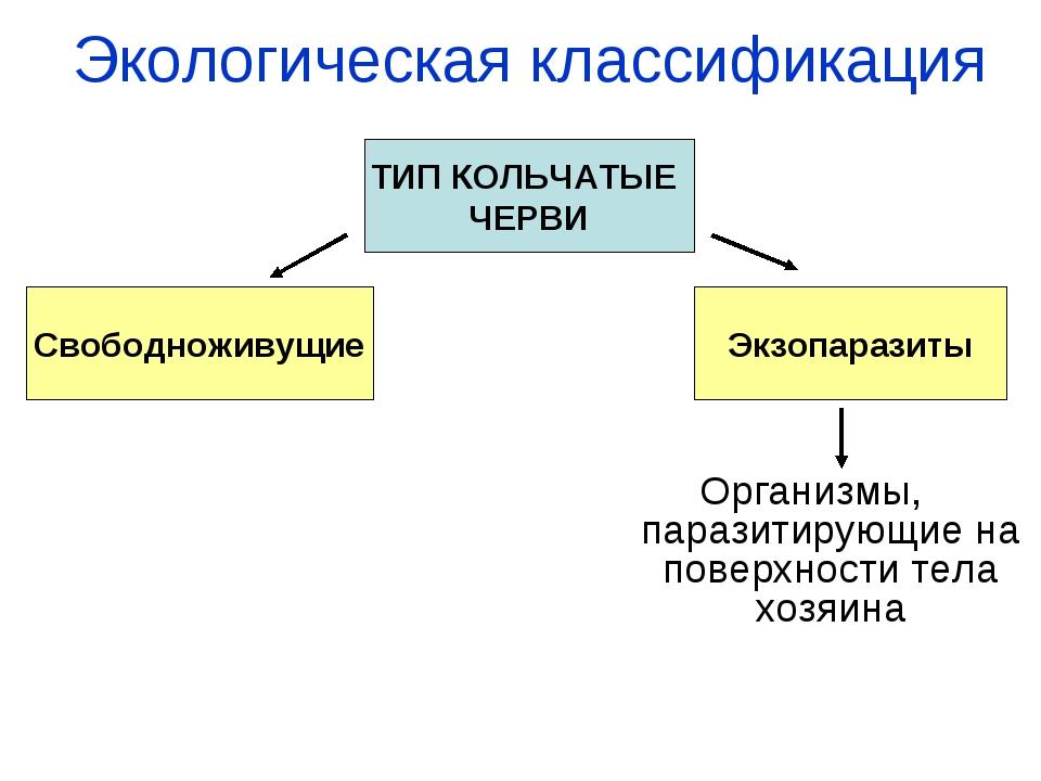 Экологическая классификация Организмы, паразитирующие на поверхности тела хоз...