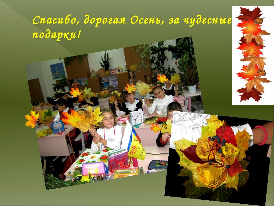 Спасибо, дорогая Осень, за чудесные подарки!