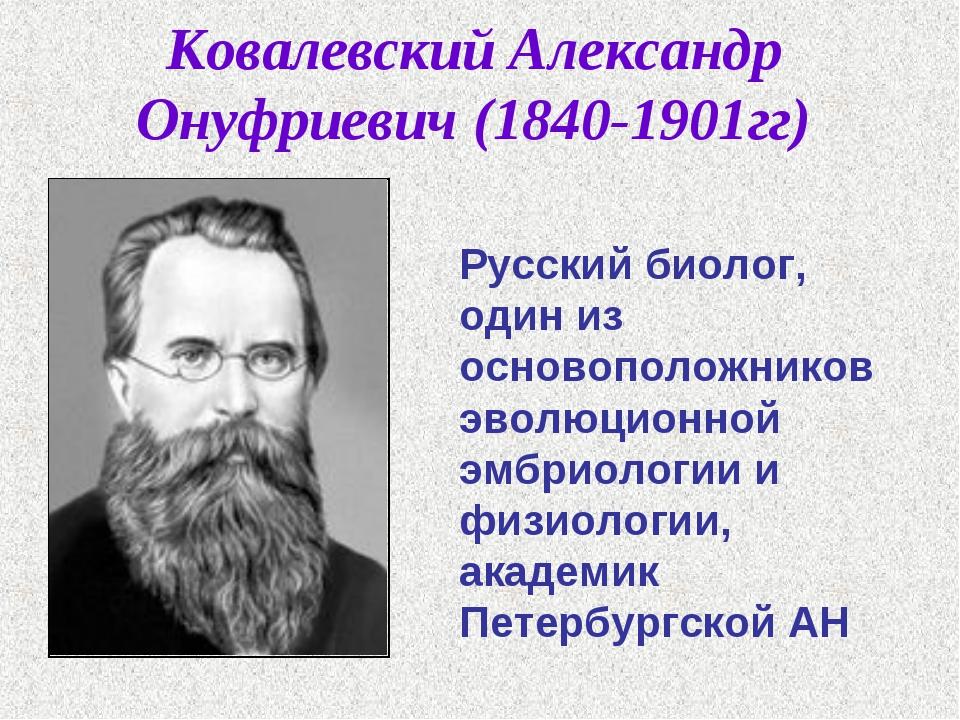 Ковалевский Александр Онуфриевич (1840-1901гг) Русский биолог, один из осново...