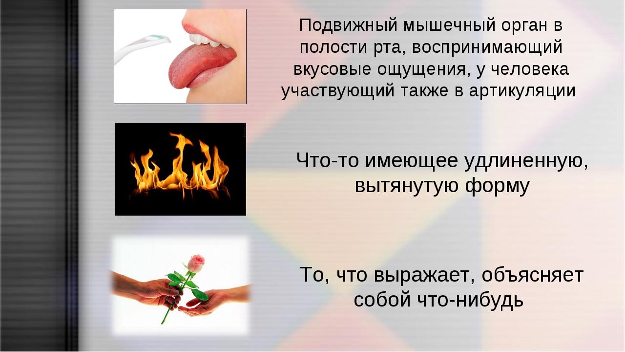 Подвижный мышечный орган в полости рта, воспринимающий вкусовые ощущения, у ч...