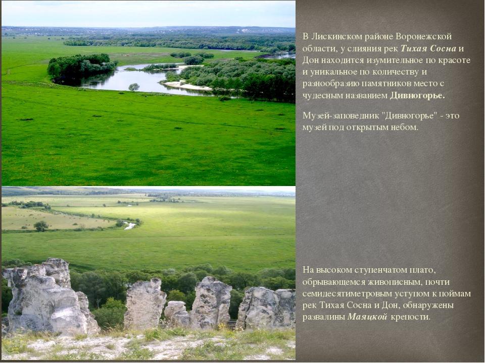 В Лискинском районе Воронежской области, у слияния рек Тихая Сосна и Дон нахо...