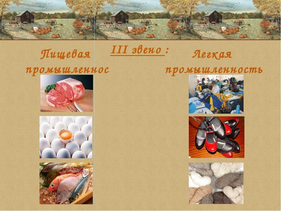 Пищевая промышленность Легкая промышленность III звено :