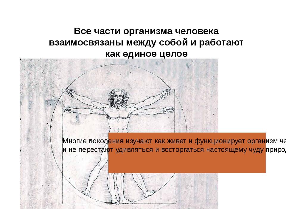Все части организма человека взаимосвязаны между собой и работают как единое...