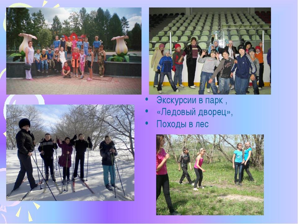Экскурсии в парк , «Ледовый дворец», Походы в лес