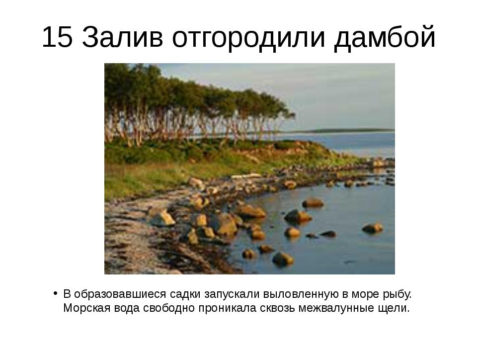 15 Залив отгородили дамбой В образовавшиеся садки запускали выловленную в мор...