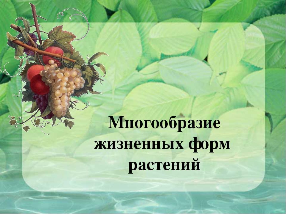 Многообразие жизненных форм растений доклад 1018