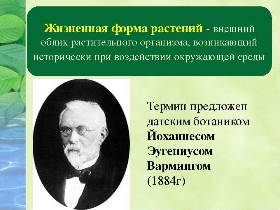 Царство растений Жизненная форма растений - внешний облик растительного орган...