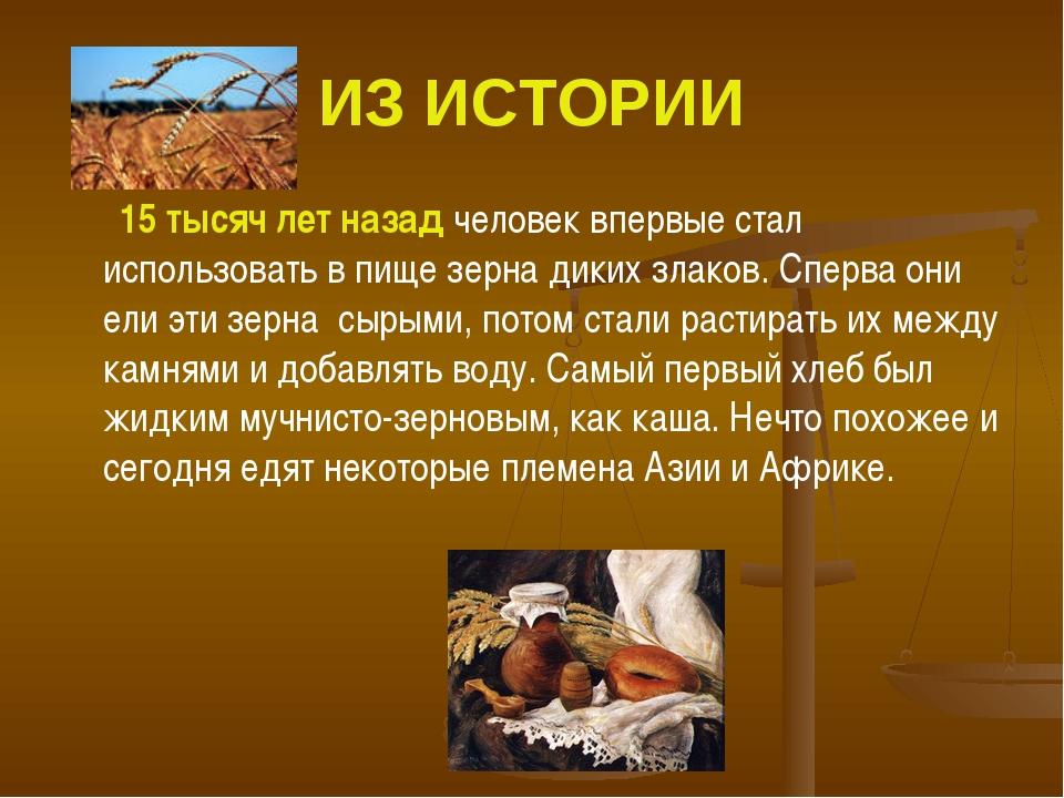 ИЗ ИСТОРИИ 15 тысяч лет назад человек впервые стал использовать в пище зерна...