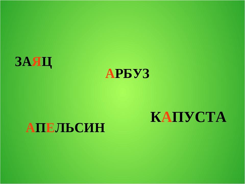 ЗАЯЦ АПЕЛЬСИН АРБУЗ КАПУСТА