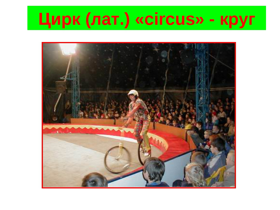 Цирк (лат.) «сircus» - круг