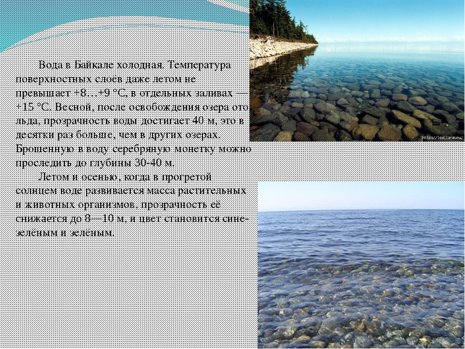 Вода в Байкале холодная.Температура поверхностных слоёв дажелетом не превы...
