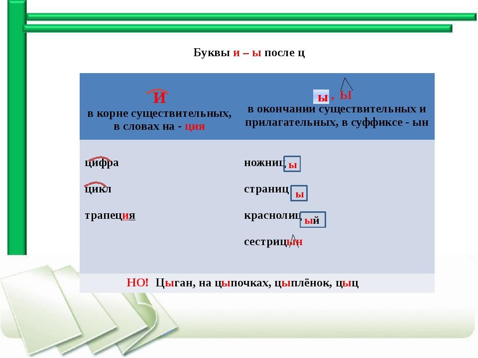 Буквы и – ы после ц ы ы ый ы И в корне существительных, в словах на -ция , Ы...