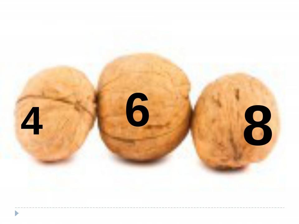 4 6 8