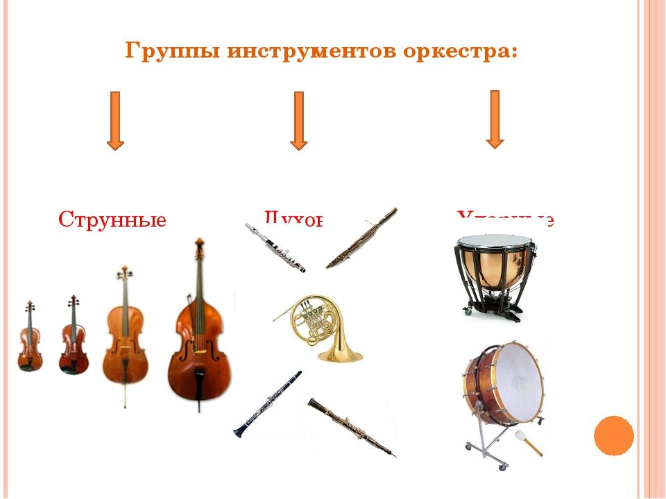 Группы инструментов оркестра: Струнные Духовые Ударные
