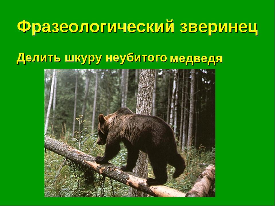 Фразеологический зверинец Делить шкуру неубитого . . . медведя