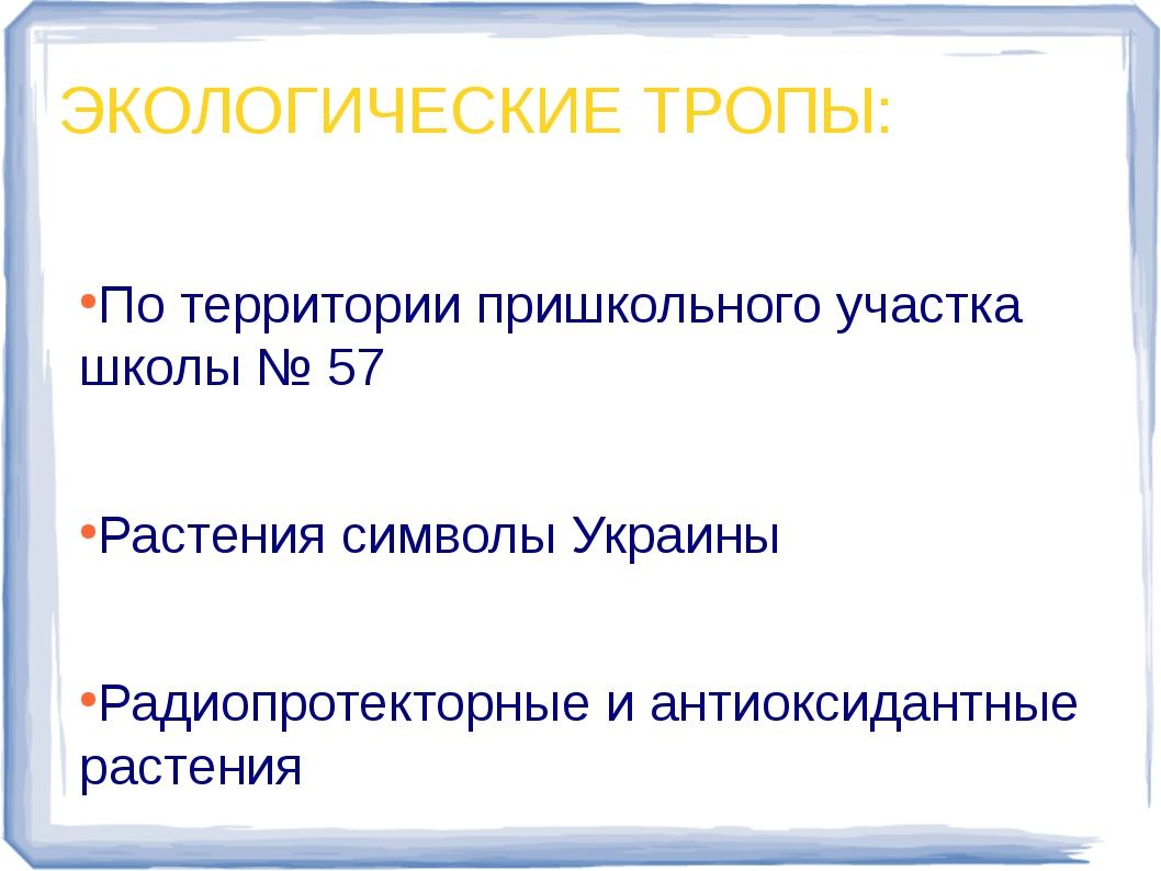 По территории пришкольного участка школы № 57 По территории пришкольного уча...