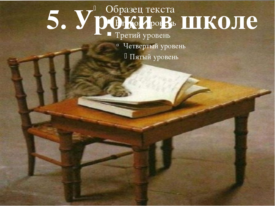 5. Уроки в школе
