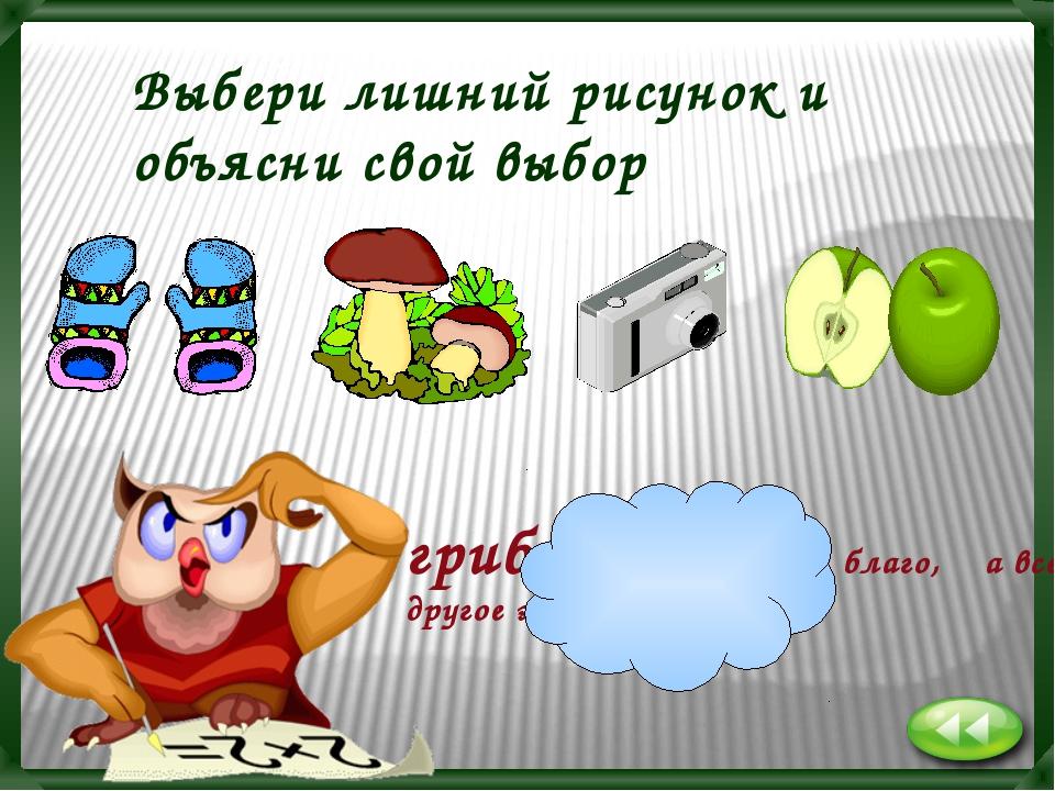 грибы- это свободное благо, а все другое экономическое Выбери лишний рисунок...