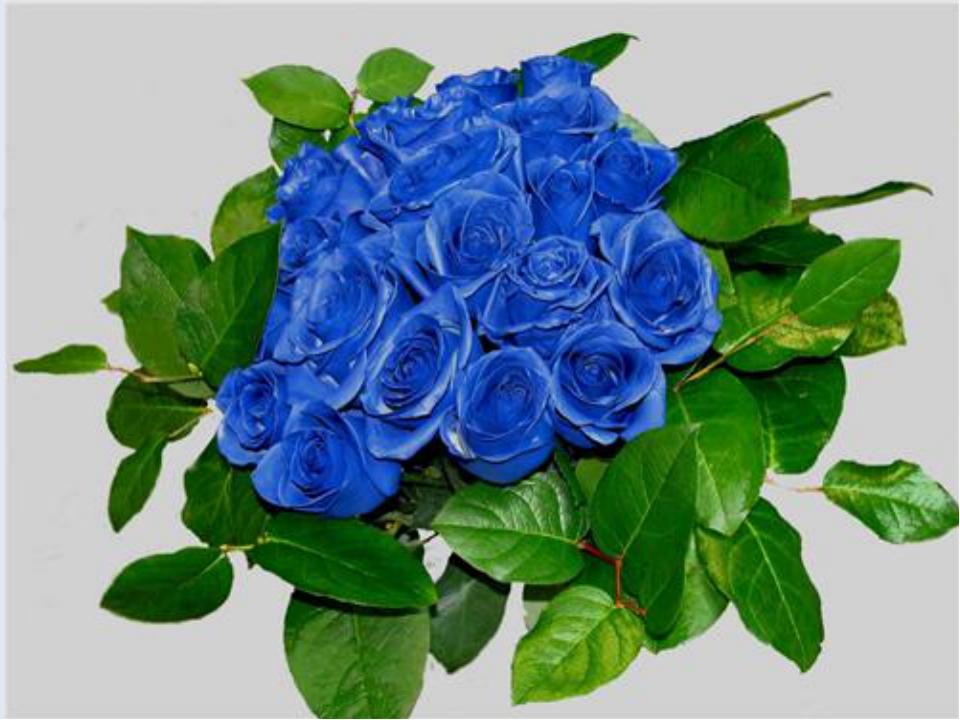 Химия Соединения, какого металла, почти все окрашены в голубой цвет? Ответ: М...