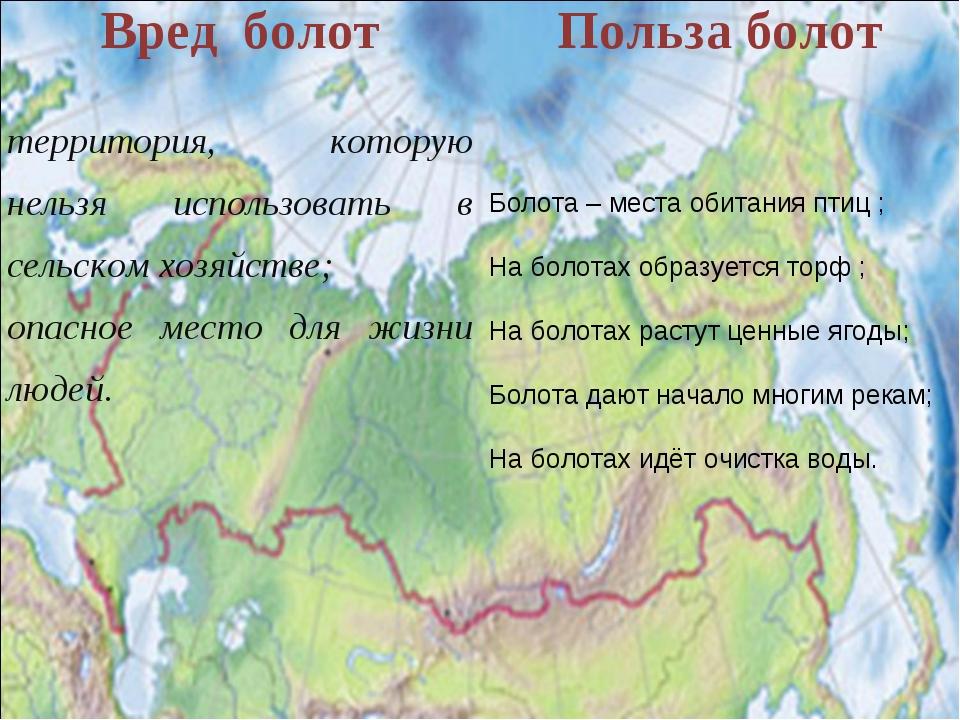 Болота – места обитания птиц ; На болотах образуется торф ; На болотах растут...