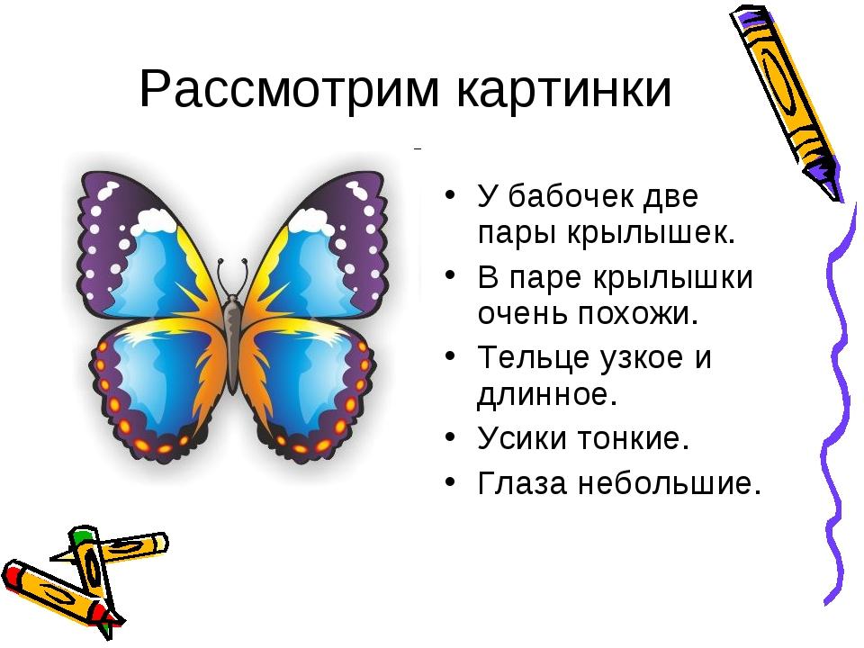 Рассмотрим картинки У бабочек две пары крылышек. В паре крылышки очень похожи...