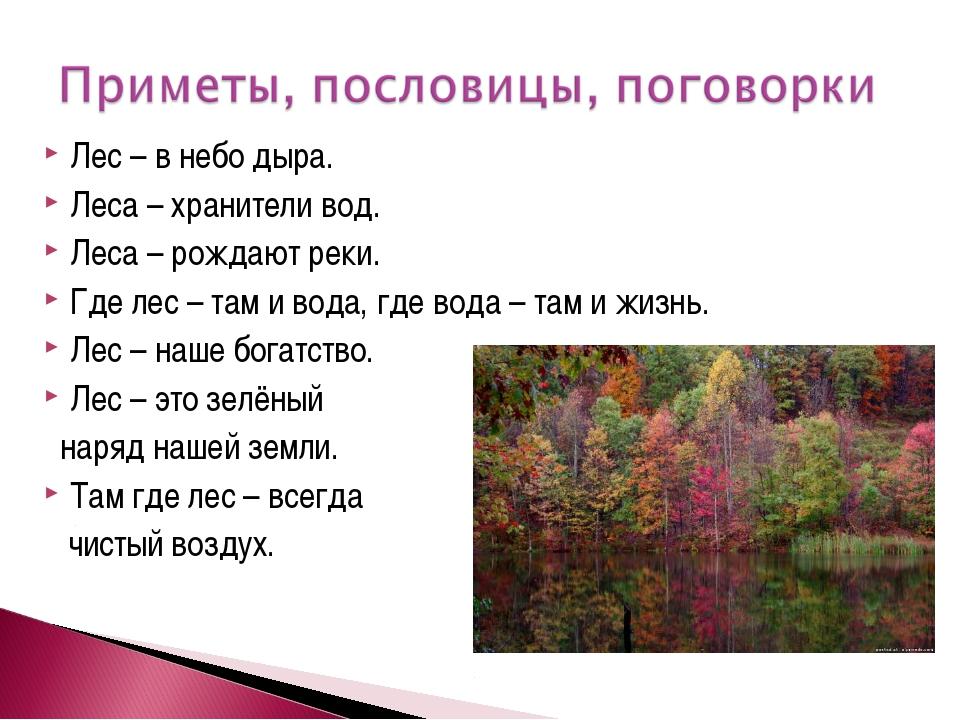 Лес – в небо дыра. Леса – хранители вод. Леса – рождают реки. Где лес – там и...