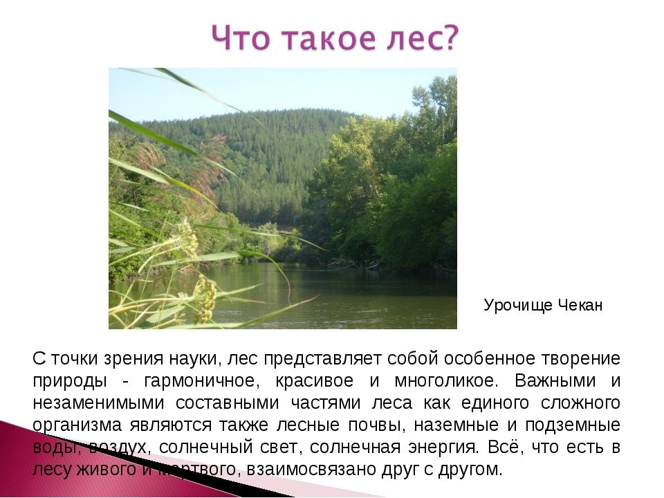 С точки зрения науки, лес представляет собой особенное творение природы - гар...