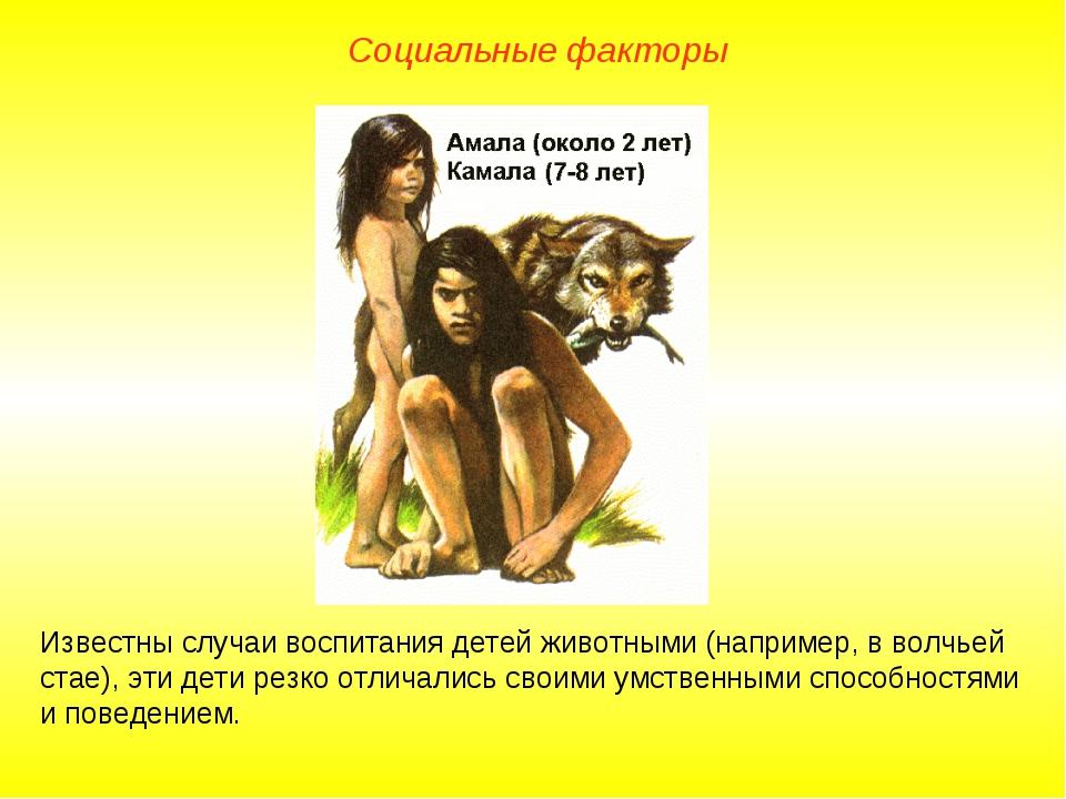 Известны случаи воспитания детей животными (например, в волчьей стае), эти де...
