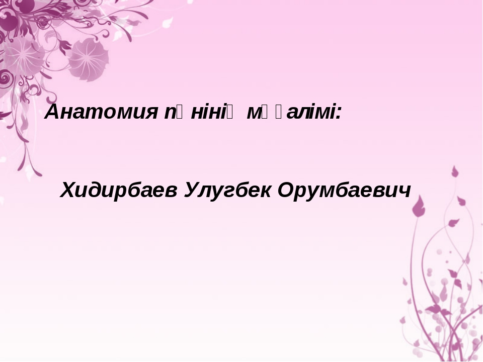 Анатомия пәнінің мұғалімі: Хидирбаев Улугбек Орумбаевич