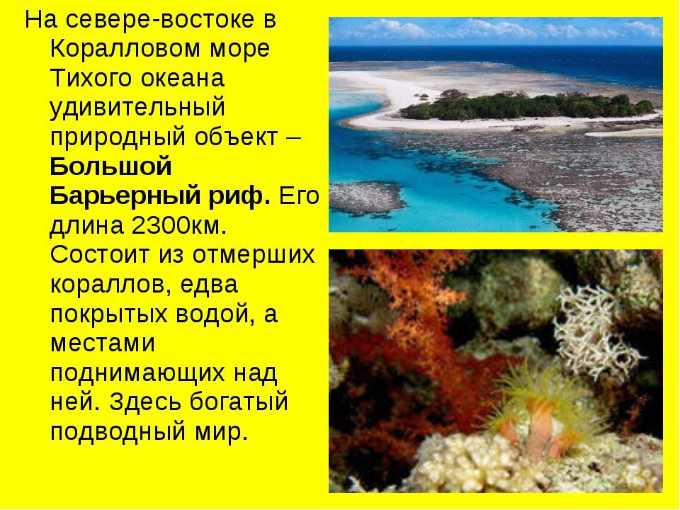 На севере-востоке в Коралловом море Тихого океана удивительный природный объе...