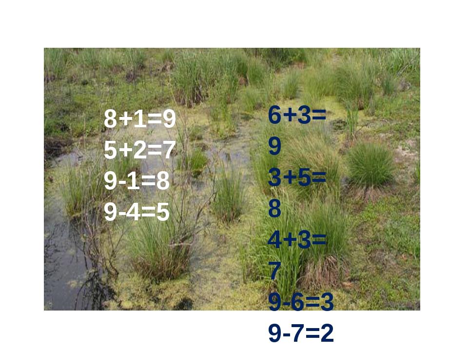 8+1=9 5+2=7 9-1=8 9-4=5 6+3=9 3+5=8 4+3=7 9-6=3 9-7=2 9-8=1