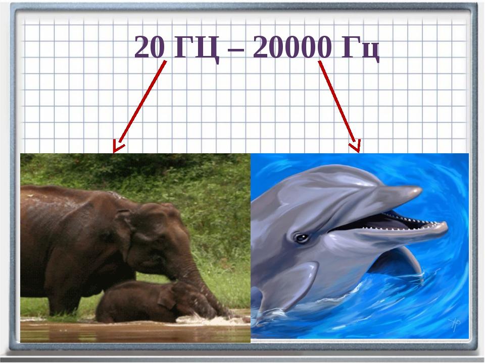 20 ГЦ – 20000 Гц Частота меньше- инфразвук Частота больше- ультразвук