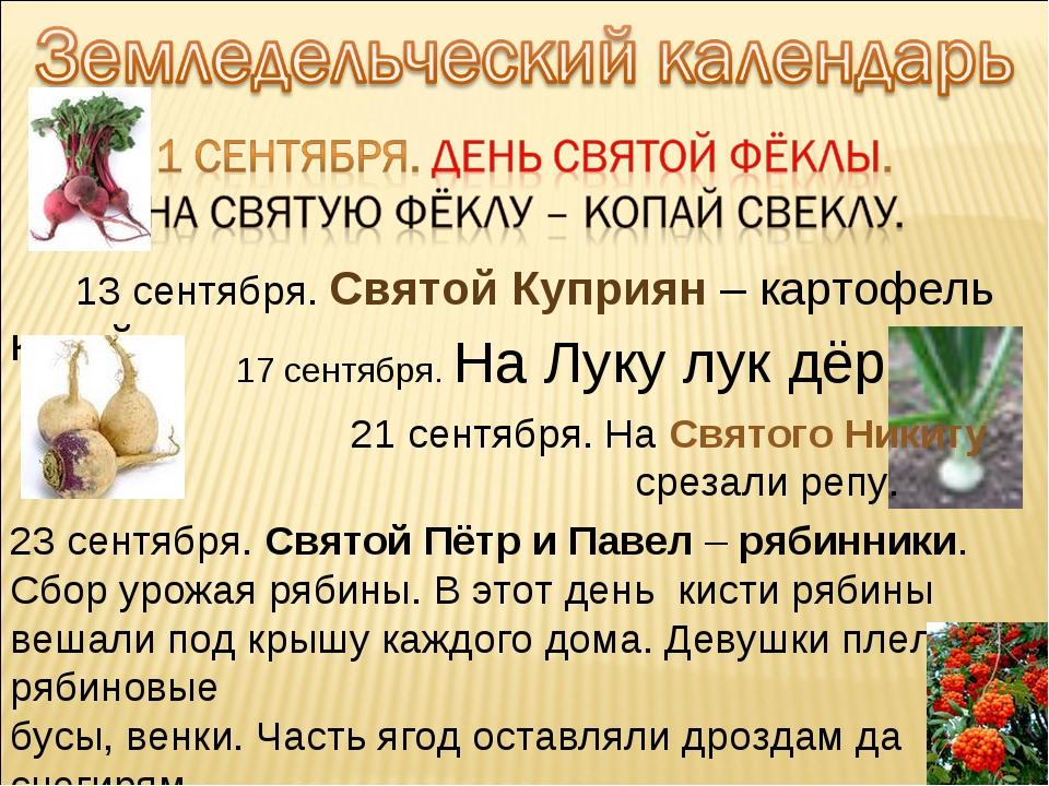 13 сентября. Святой Куприян – картофель копай. 17 сентября. На Луку лук дёрг...