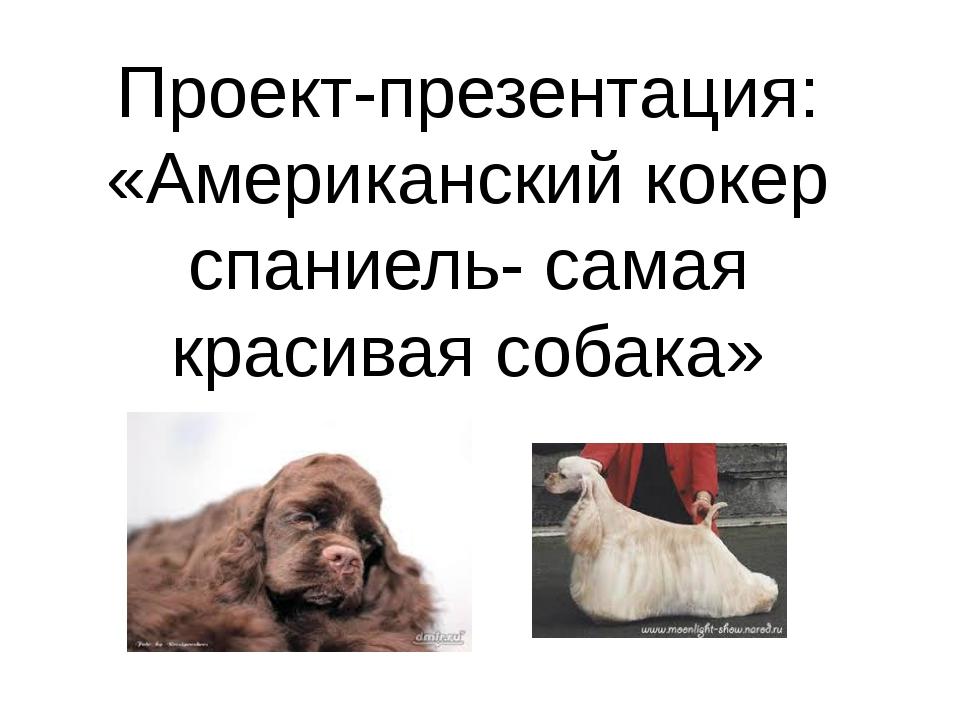 Проект-презентация: «Американский кокер спаниель- самая красивая собака»
