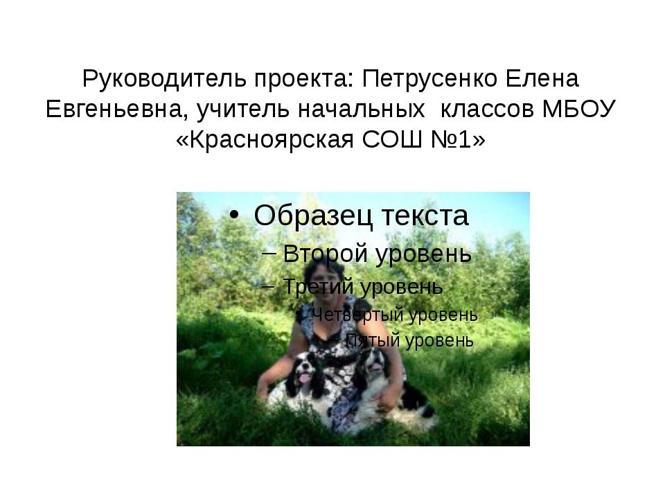 Руководитель проекта: Петрусенко Елена Евгеньевна, учитель начальных классов...