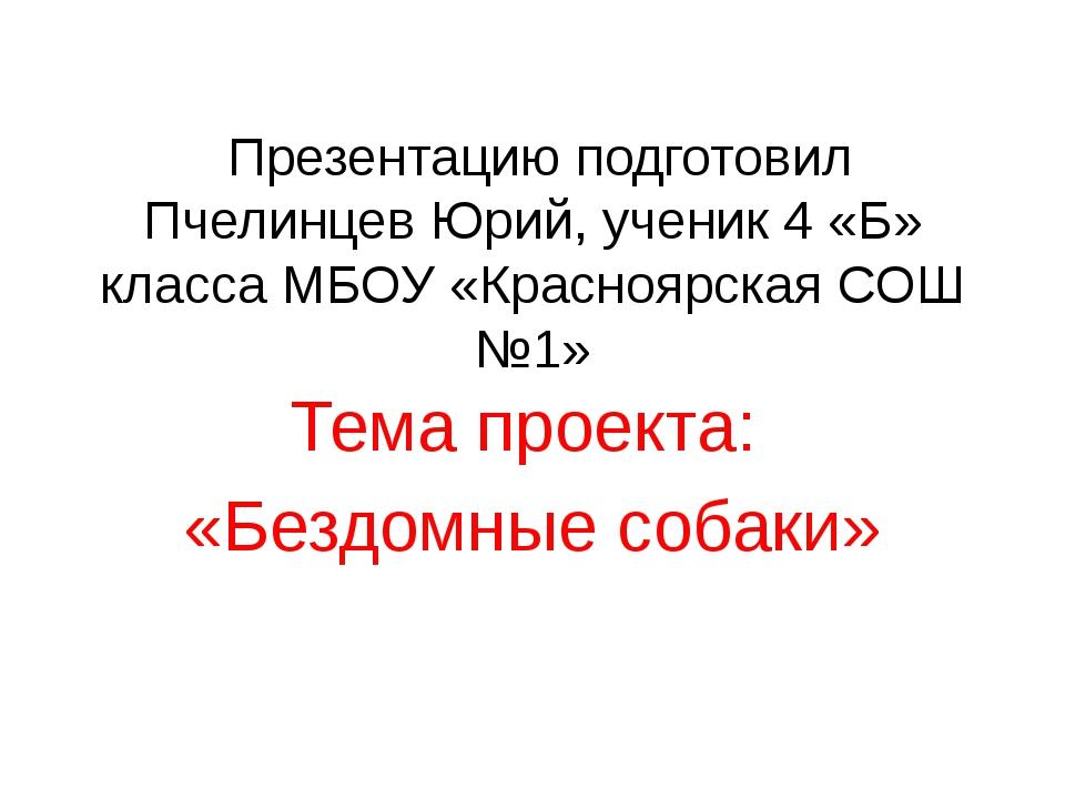 Презентацию подготовил Пчелинцев Юрий, ученик 4 «Б» класса МБОУ «Красноярска...