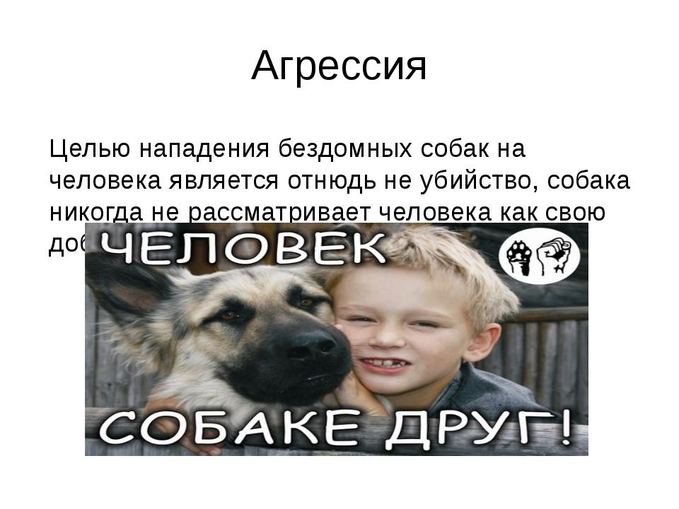 Агрессия Целью нападения бездомных собак на человека является отнюдь не убийс...