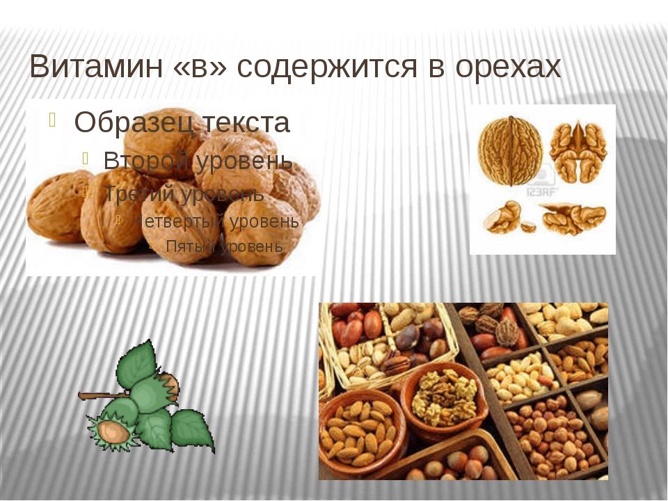 Витамин «в» содержится в орехах