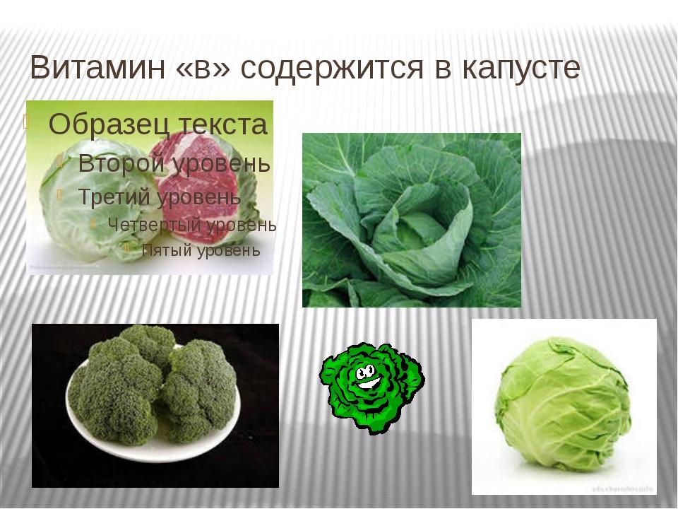 Витамин «в» содержится в капусте