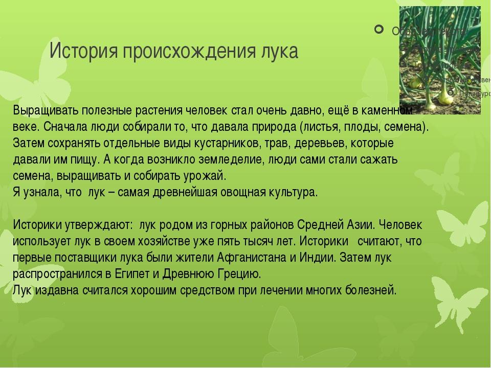 История происхождения лука Выращивать полезные растения человек стал очень да...