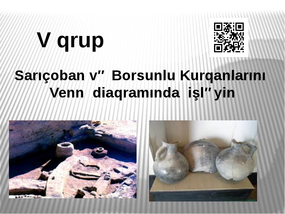 V qrup Sarıçoban və Borsunlu Kurqanlarını Venn diaqramında işləyin