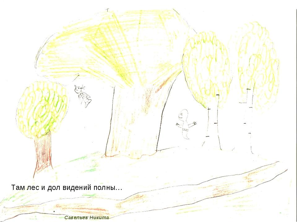 Савельев Никита Там лес и дол видений полны…