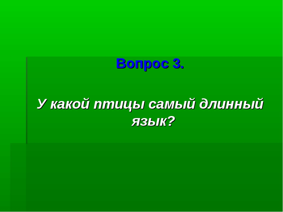 Вопрос 3. У какой птицы самый длинный язык?