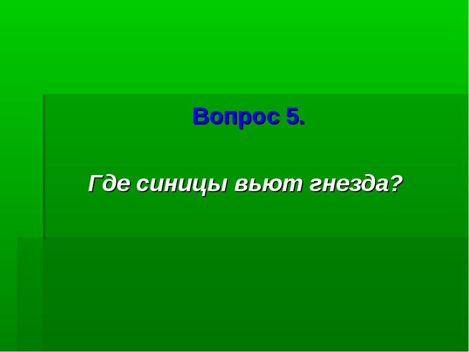 Вопрос 5. Где синицы вьют гнезда?
