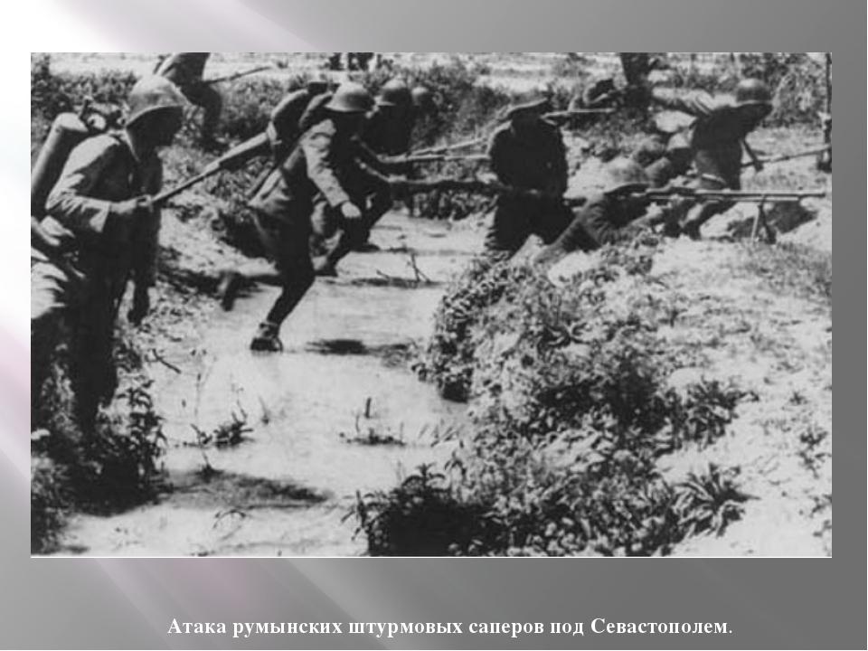 Атака румынских штурмовых саперов под Севастополем.