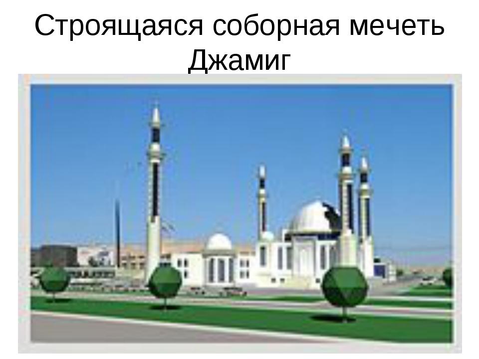 Строящаяся соборная мечеть Джамиг