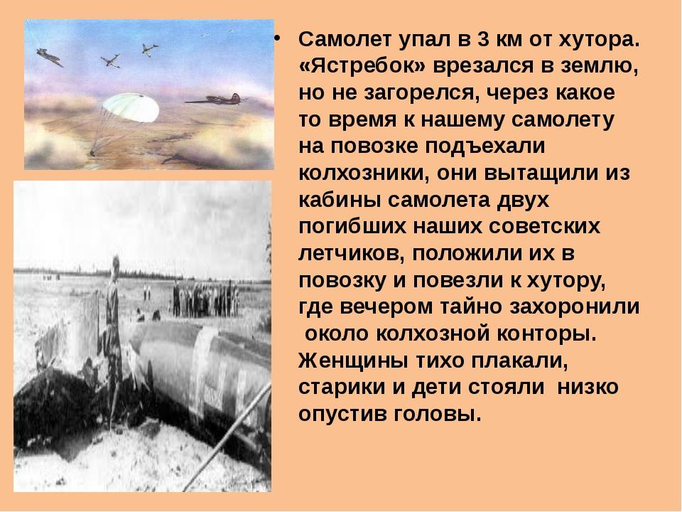 Самолет упал в 3 км от хутора. «Ястребок» врезался в землю, но не загорелся,...