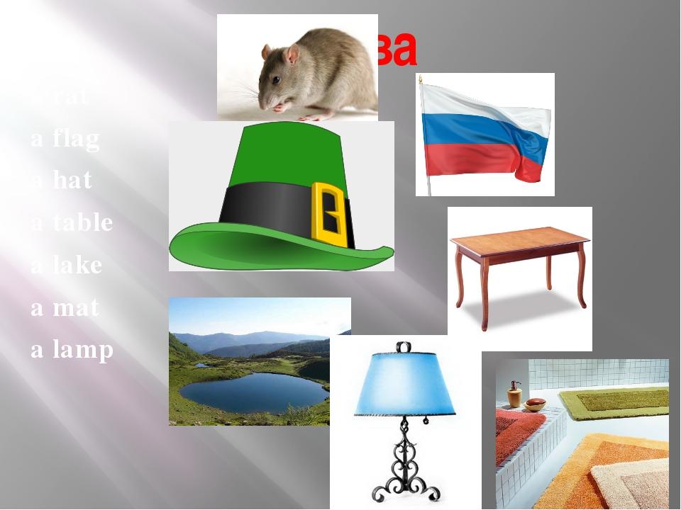 a rat a flag a hat a table a lake a mat a lamp Слова