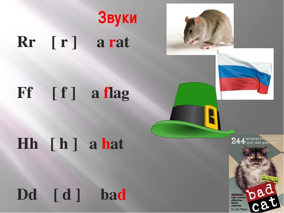 Звуки Rr [ r ] a rat Ff [ f ] a flag Hh [ h ] a hat Dd [ d ] bad