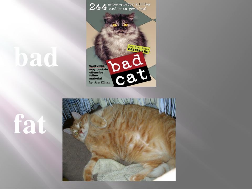 bad fat